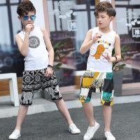 男童夏装童装儿童夏季韩版潮衣12周岁潮宝宝背心套装