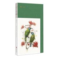 中国国家地理手绘笔记本-瞬间