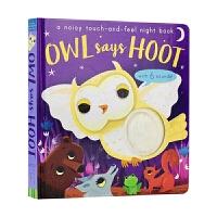 Owl Says Hoot 猫头鹰 触摸发声书 英文原版
