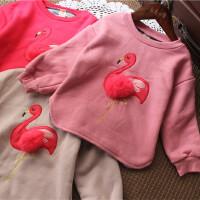 女童毛球夹棉卫衣加厚儿童保暖绒衫宝宝套头打底衫冬装韩版新