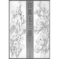 【新书店正版】白描玉兰图,范新国,广西美术出版社9787806740552