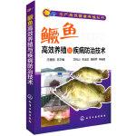 水产高效健康养殖丛书--鳜鱼高效养殖与疾病防治技术