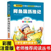 鳄鱼国历险记 彩图注音彭懿著 小学生语文新课标必读丛书一年级二年级课外书儿童读物6-7-8-10岁少儿书籍图书故事书