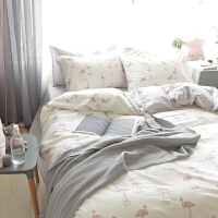 床上四件套床单被套床品冬季全棉纯棉公主风1.8m床简约1.5双人 米白色 火烈鸟米白
