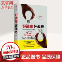 好战略,坏战略(畅销版) (美)理查德・鲁梅尔特(Richard Rumelt) 著;蒋宗强 译