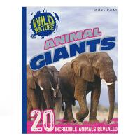 Wild Nature Animal Giants 野外大自然 大体积动物 儿童百科科普英文绘本 英文原版图书
