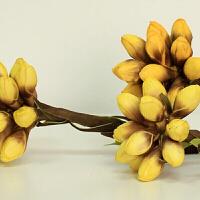 艺术装饰花花蕊仿真干花落地花瓶插花道具 橘色 B98双头花蕊