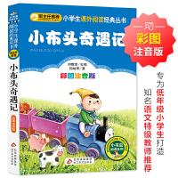 小布头奇遇记(彩图注音版)小学生课外阅读经典 全国优秀