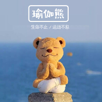 毛绒玩具泰迪熊软骨公仔瑜伽熊ins送女友