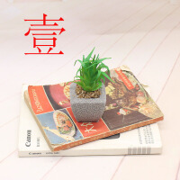 多肉仿真植物假花盆栽盆景迷你小肉肉塑料假花家居摆件桌面装饰品