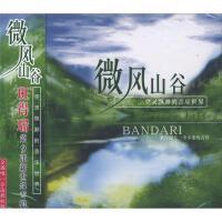 微风山谷-班得瑞第9张新世纪专辑CD( 货号:2000018167748)