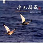 平天飞羽 中国林业出版社