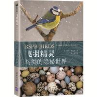飞羽精灵:鸟类的隐秘世界 [英]彼得・霍尔顿著曾晨