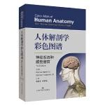人体解剖学彩色图谱・神经系统和感觉器官