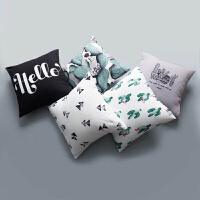 仙人掌抱枕 简约现代北欧 风 精选靠垫沙发靠枕