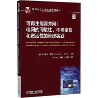 可再生能源并网:电网的间歇性、不确定性和灵活性的管理实践 (美)劳伦斯・E.琼斯(Lawrence E.Jones)