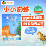 美国进口 The Itsy Bitsy Spider【平装】廖彩杏书单第32周 第70本#