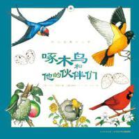 啄木鸟和他的伙伴们 正版 黛安彭斯、梅尔博林、克里斯汀孔普蒂比茨/著 9787556019090