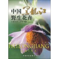 中国黑龙江野生花卉
