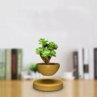 创意磁悬浮摆件 礼品家居装饰自转黑科技磁悬浮办公室内盆栽转运礼品