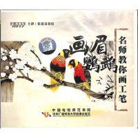 名师教你画工笔之画眉鹦鹉VCD( 货号:2000012304354)