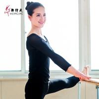 形体舞蹈练功服网纱 女芭蕾舞蕾丝教师基训服中国舞弹力显瘦