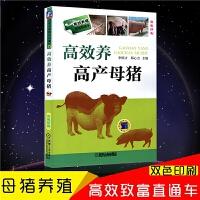 高效养母猪技术大全书籍养猪技术书籍母猪养殖技术书籍大全高效养猪与猪病防治技术书籍母猪的饲养与管理母猪的产后护理养猪的书