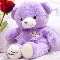 泰迪熊薰衣草毛绒玩具玩偶抱抱熊公仔布娃娃情人节礼物送女友抖音 紫色薰衣草款