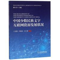 中国少数民族文字互联网资源发展【正版书籍,达额立减】