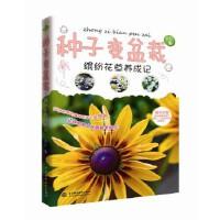 种子变盆栽――缤纷花草养成记 自在 水利水电出版社