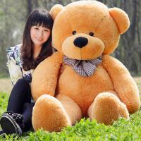 公仔大号泰迪熊猫女孩毛绒玩具布娃娃抱抱熊玩偶情人节生日礼物