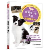 和爱犬一起生活 边境牧羊犬 宠物狗日常饮食/训练/疾病/护理/健康/交流 驯养方法技巧食谱大全养狗教程一本通养狗的书籍