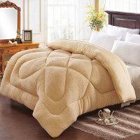羊羔绒冬被加厚被子保暖棉被被芯学生宿舍冬季单人双人春秋被8斤T