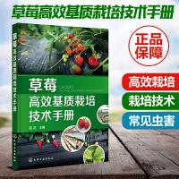 草莓高效基质栽培技术手册 草莓养殖技术 草莓发病原因 症状及防治措施 草莓常见虫害 可操作性 可供广大草莓种植者借鉴参考
