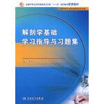 解剖学基础学习指导与习题集(中职基础课配教)