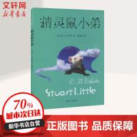 精灵鼠小弟 上海译文出版社