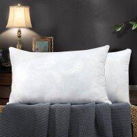 【5折限时抢】水星家纺格兰贝蚕丝眠乐枕成人枕芯一只装单人家用睡眠枕