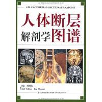 人体断层解剖学图谱 刘树伟 山东科学技术出版社 9787533132958