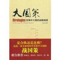 【二手9成新】大国策:发展中大国的战略维度