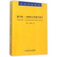 正版速发 数学桥―用图形计算器学数学 林风,黄炳锋 著 9787560352992 哈尔滨工业大学出版社
