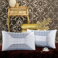 枕头枕芯单人决明子保健护颈枕磁疗枕 一对拍2个 尖角磁疗保健枕