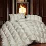 伊迪梦家纺 全棉精品95羽绒被 纯棉面料优质鸭绒毛填充 蓬松加厚保暖冬被单人双人床PV128