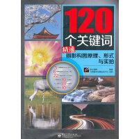 VIP120���P�I�~精通�z影���D原理、形式�c��拍(全彩) 黑冰�z影著 9787121160875 �子工�I出版社