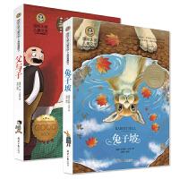 国际大奖儿童文学 父与子+兔子坡 套装2册 青少年版课外必读文学名著 7-15岁必读少儿图书畅销 名著读物文学畅销书推