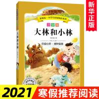 大林和小林(注音版)-新课标.小学生拓展阅读系列