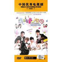 怎么会爱上你-大型青春偶像剧(十碟装原装正版)DVD( 货号:15201000780)