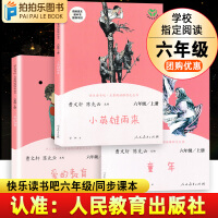 小英雄雨来 童年 爱的教育 人民教育出版社曹文轩陈先云快乐读书吧六年级上册课外阅读书目