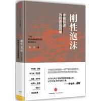 刚性泡沫 朱宁中信出版集团9787508656885