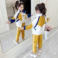 女童套装儿童时髦运动休闲女孩两件套