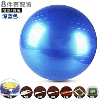 皮球儿童充气球类玩具加厚加大按摩球健身瑜伽球儿童大球